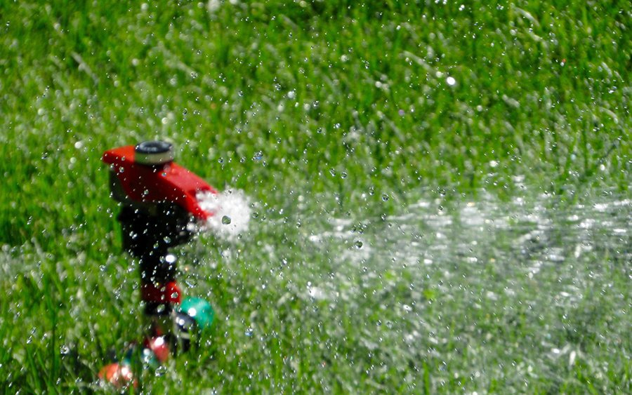 lawn care for men watering